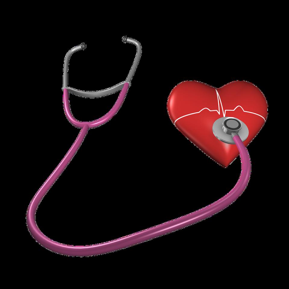 poza cu caracter descriptiv inima