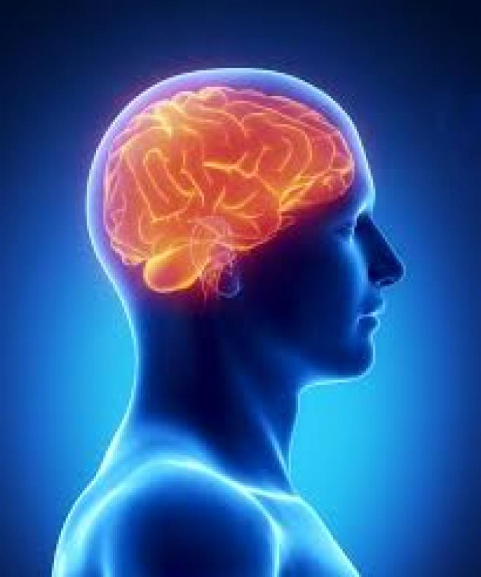 Creierul este afectat
