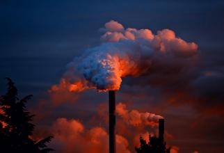 Astm bronșic: milioane de copii îmbolnăviți din cauza poluării