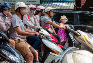 Memoria este afectată de aerul poluat