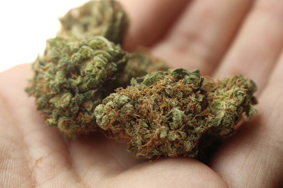 Tinerii consumă cel mai frecvent marijuana