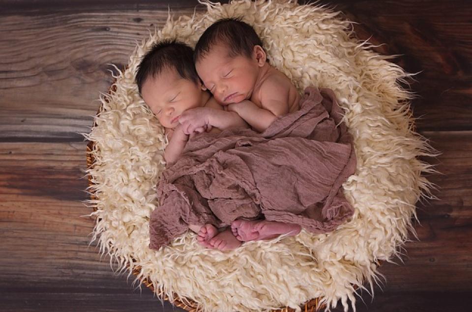 Gemeni, bebelusi modificați genetic