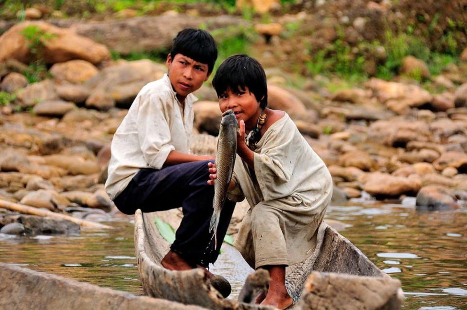 De mici, copiii din Tribul Tsimane învață să muncească pentru mâncarea lor. Foto: frontierstravel.com