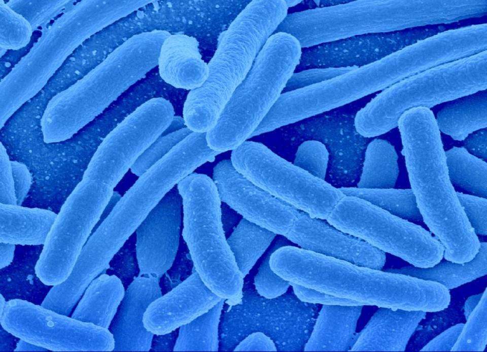 Tuberculoza a fost depistată la trei elevi de la aceeași școală