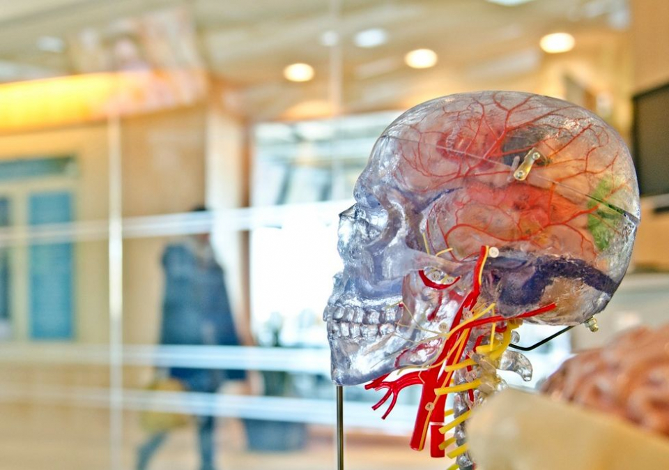 În unele tumori cerebrale, imunoterapie are efect.
