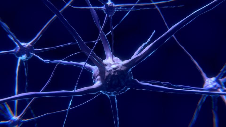 Inflamația cronică ar putea fi asociată cu apariția bolii Alzheimer