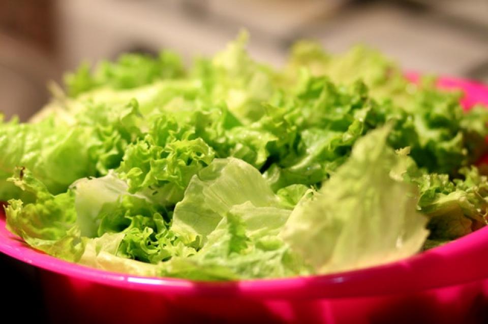 Salata verde cu E.coli