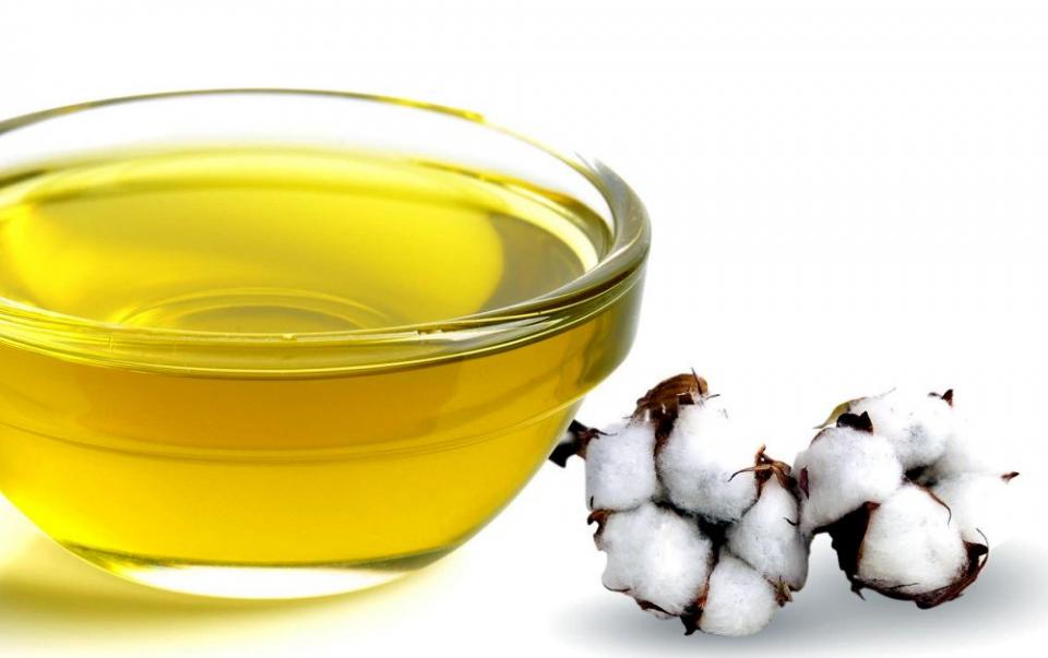 Semințele de bumbac conțin un ulei care scade colesterolul
