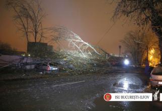 Noaptea trecuta mai multi copaci au cazut in Capitala din cauza vremii nefavorabile. FOTO: ISU Bucuresti-Ilfov