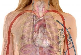 Boli pulmonare
