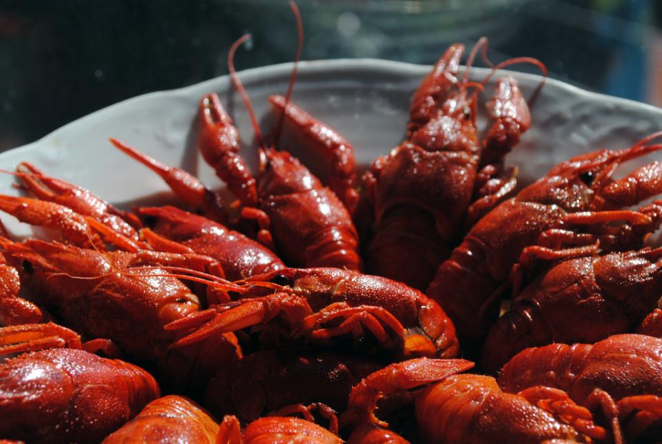 Cele mai frecvente alergii la adulți în SUA sunt la crustacee