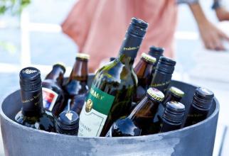 Sticle de vin și bere
