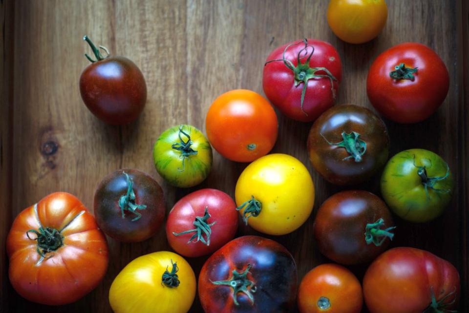 Roșii de culori diferite: unele au mai mulți antioxidanți decât altele