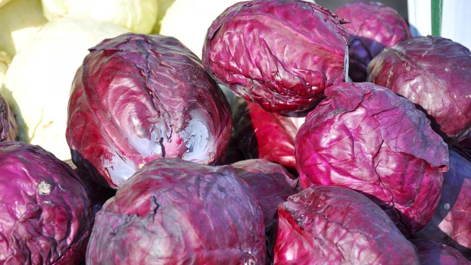 Varza rosie are efecte antioxidante și vitaminizante