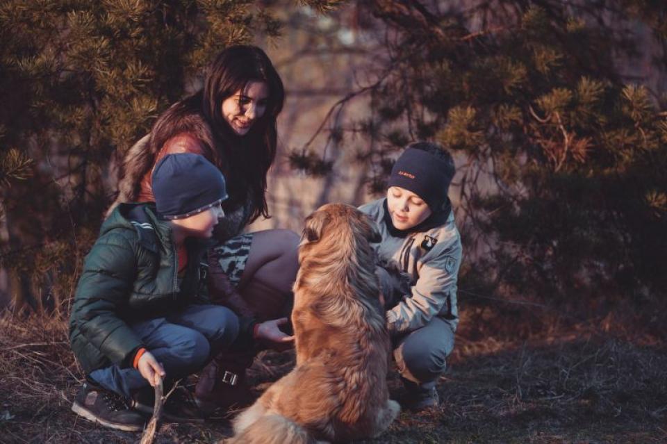 Câinii reduc șansele ca puștii să facă alergii la maturitate  FOTO: pexels.com