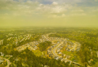 Orasul acoperit de polen. Foto: Jeremy Gilchrist