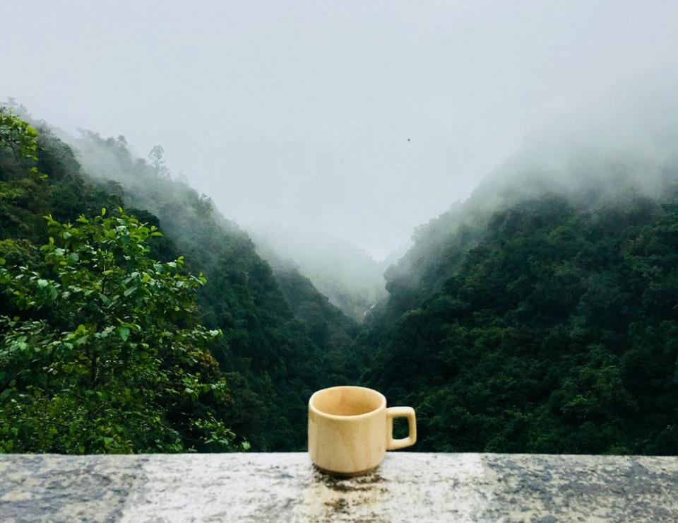 O cana de ceai ar putea să-ți ia durerea de cap?
