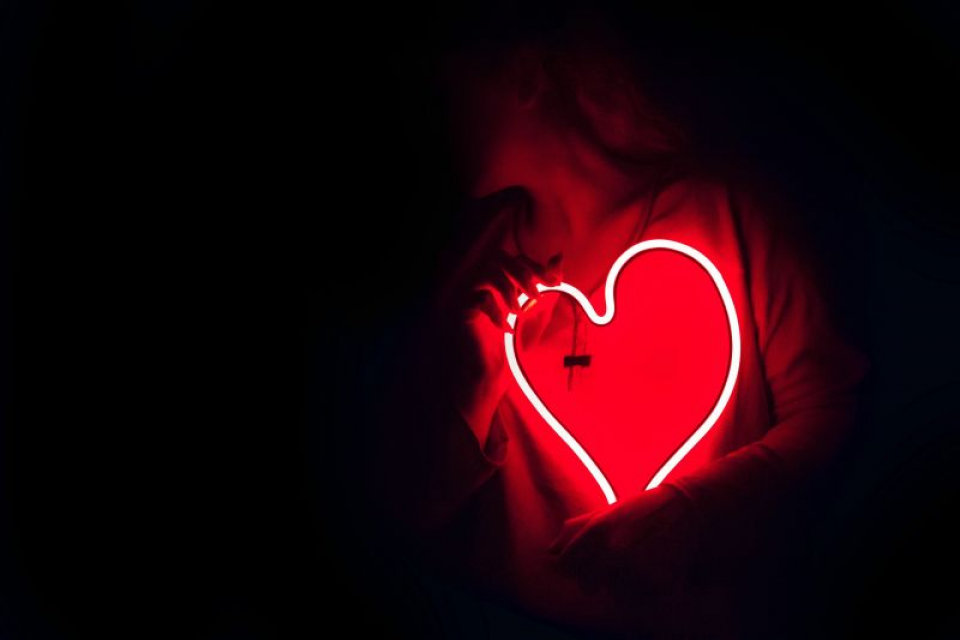 Inima transmite mesaje țesutului gras   FOTO: pexels.com