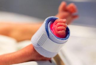 Nou-născuți