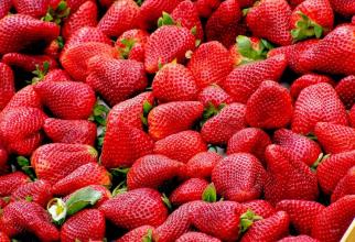 Dieta cu căpșuni        FOTO: pexels.com
