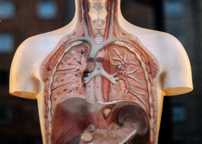 Embolie pulmonară