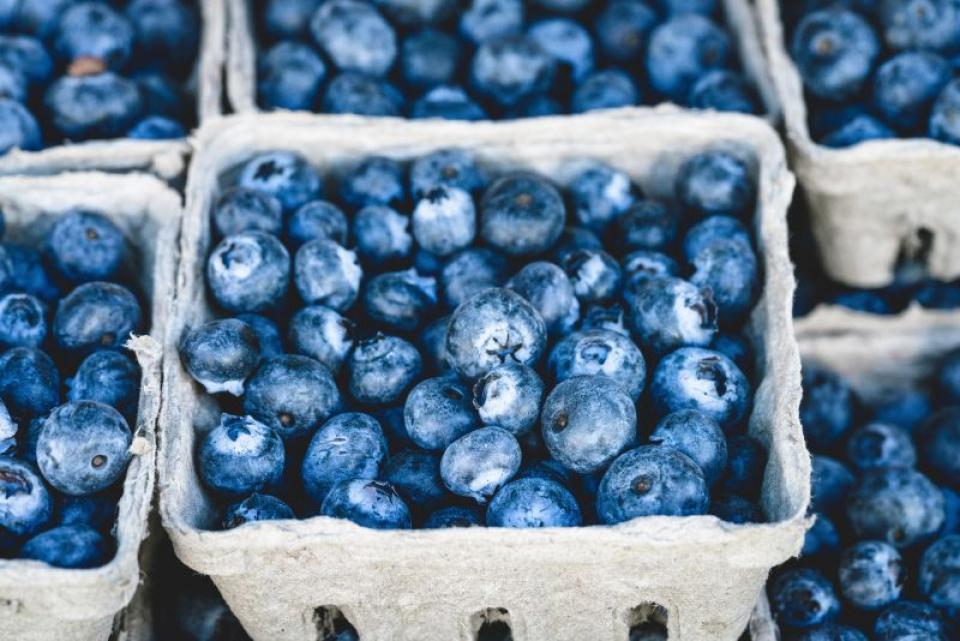 Afine, tensiune arterială: cât de des ar fi bine să mâncăm afine?  FOTO: pexels.com