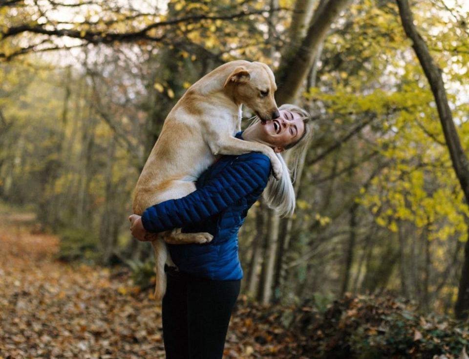 O boală pe care o fac câinii poate infecta oamenii