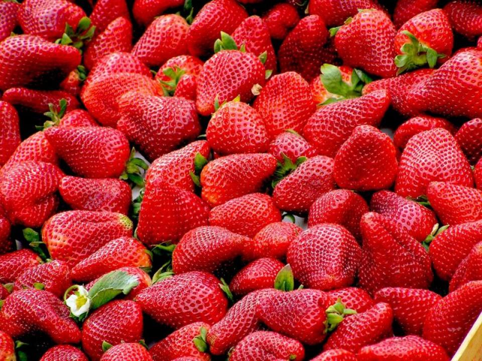 Dietă: căpșunii se numără printre cele 5 fructe recomandate de cercetători să nu lipsească din consumul zilnic  FOTO: pexels.com