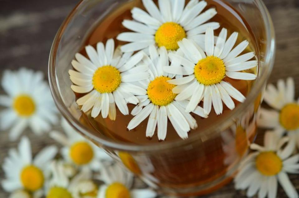 Digestie bună: ceaiul de mușețel o ajută  FOTO: pexels.com