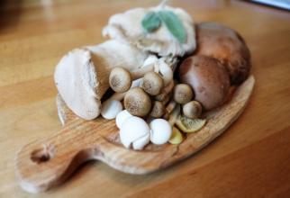 Oricât de tentante ți se par ciupercile pe care le găsești în pădure, mai bine nu-ți riști sănătatea