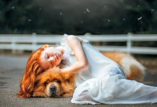 Copil și câine