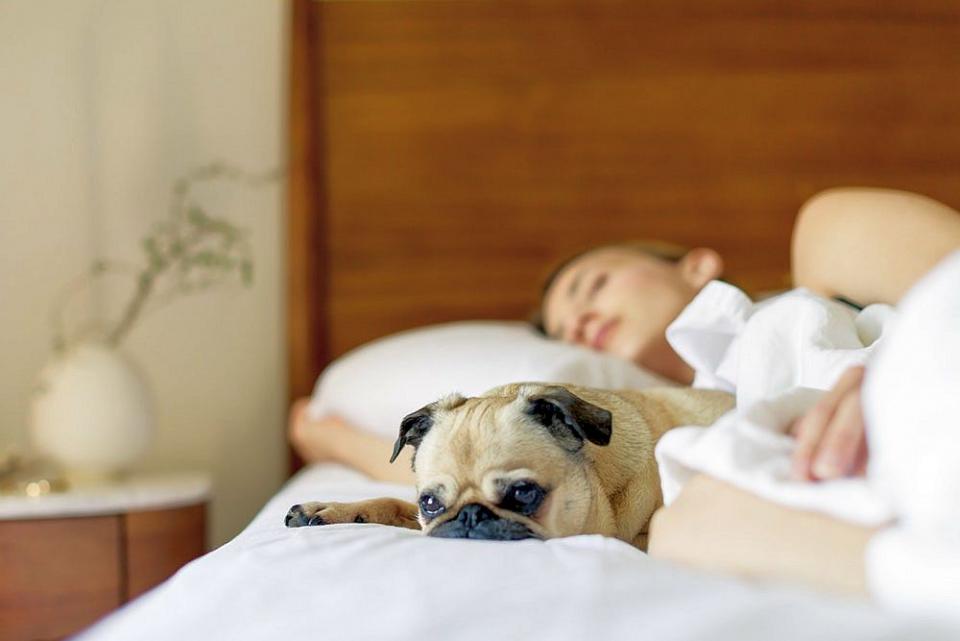 Problemele de somn sunt legate de apariția ulterioară a bolii Alzheimer