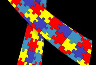 Autismul ar putea avea drept cauză moștenirea genetică     FOTO: pixabay.com