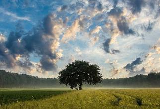 Autoritățile au anunțat oficial că nu există niciun nor radioactiv deasupra României