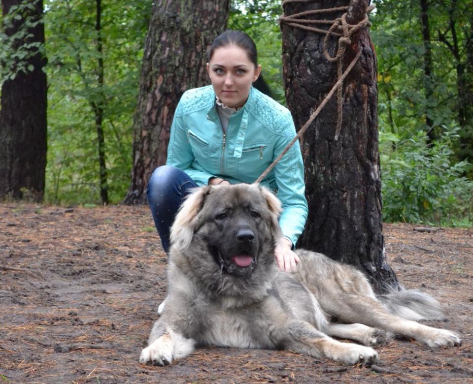 Câinele te ține la distanță de boli de inimă, nu doar de oameni răi