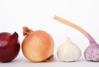 Consumul de ceapă și usturoi poate reduce riscul de cancer mamar