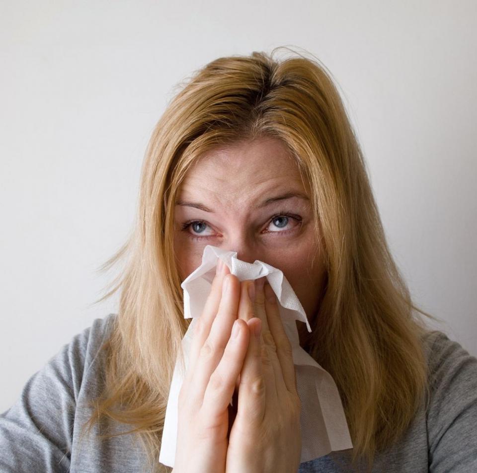 Rinita alergila care decurge din alergia la ambrozie e de multe ori confundată cu o răceala