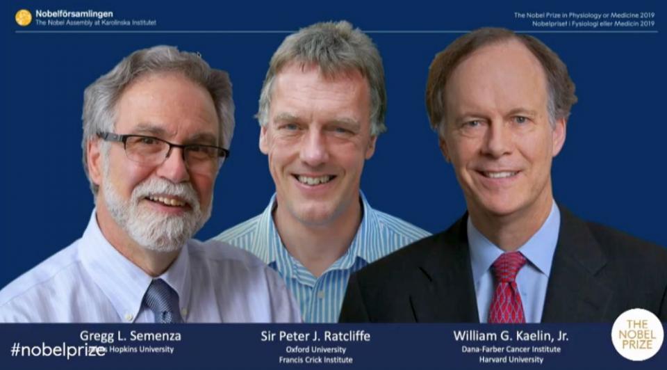 Cei trei laureati
