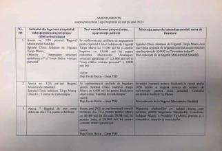 Amendamente
