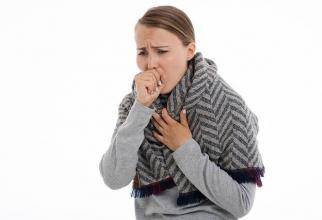 Bronsita provoacă iritarea și inflamația tuburilor bronșice. FOTO Pixabay