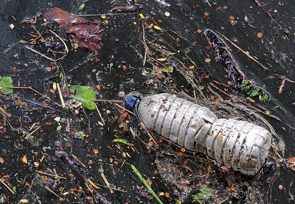 Sticlă de plastic în apă   FOTO: Pixabay