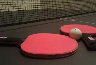 Tenis de masă  FOTO: Pixabay