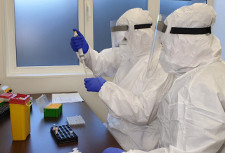 Teste PCR