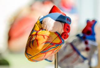 Infecțiile cardiace