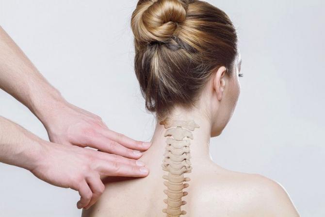 Coloană vertebrală. Foto: Pixabay