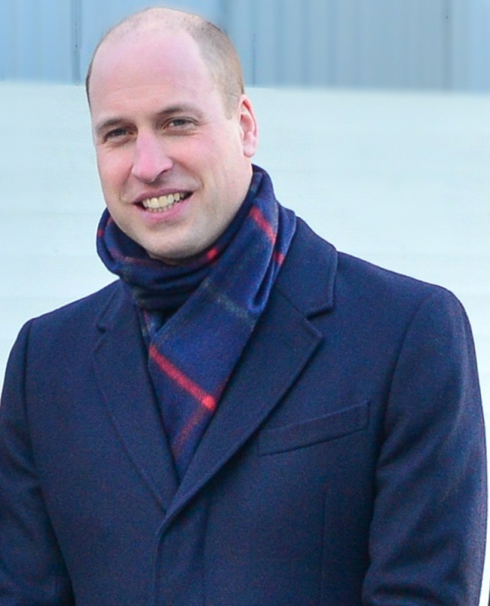 Prințul William        Foto: wikipedia, autor Frankie Fouganthin