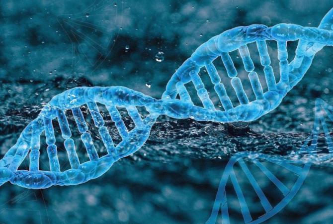 Genă, ADN. Foto: Pixabay