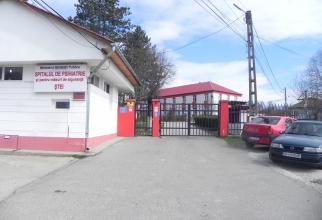 Spitalul de Psihiatrie Ștei   Foto: hpsihiatriestei.ro