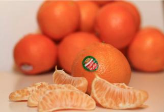 Ai grijă ce mănânci! Ce cod SECRET ascund etichetele de pe fructe