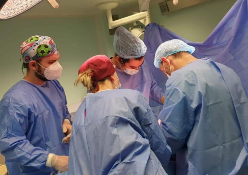 Transplant. Foto: ANT